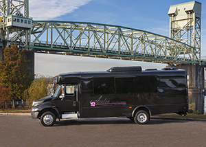 20 passenger Black Limo Bus Wilmington NC
